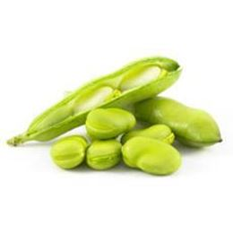 Picture of BROAD BEANS EACH
