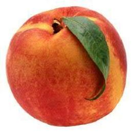 Picture of YELLOW PEACH EACH