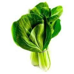 Picture of BOK CHOY EACH